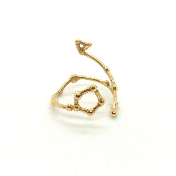 Bague argent or lyon constellation poissons bijoux créateur lyon